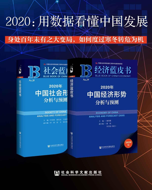 2020:用数据看懂中国发展(经济蓝皮书+社会蓝皮书)(epub+azw3+mobi)