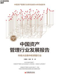 2019年中国资产管理行业发展报告:市场大动荡中的资管行业(epub+azw3+mobi)