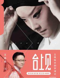 台上见:王珮瑜京剧学演记(epub+azw3+mobi)
