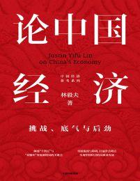 论中国经济:挑战、底气与后劲(epub+azw3+mobi)